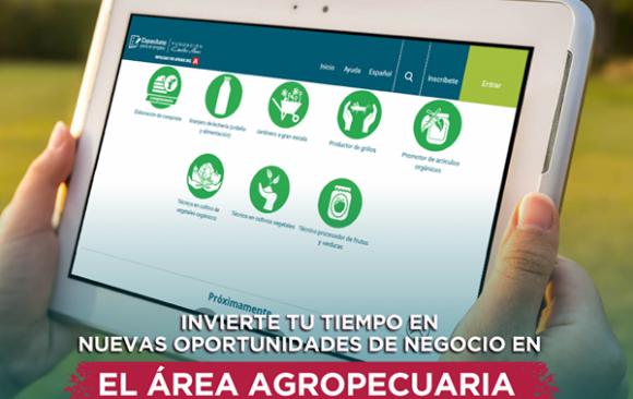 Cursos grátis sobre cultivos de la tierra y agricultura moderla